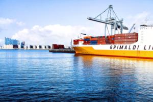 International Vehicle Shipping
